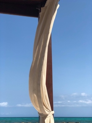 Photo of Playa del Carmen from Nourish by Lu